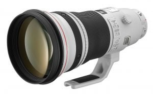 A List of Top 10 Best Bird Photography Lenses in 2020